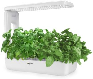 Hydroponics Growing System Support Indoor