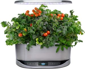 Bounty Elite Indoor Hydroponic Herb Garden