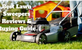 Best-Lawn-Sweepers