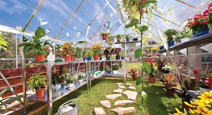 best-greenhouse-kits