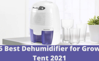6 Best Dehumidifier for Grow Tent