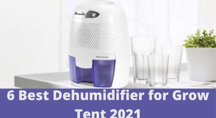 6 Best Dehumidifier for Grow Tent